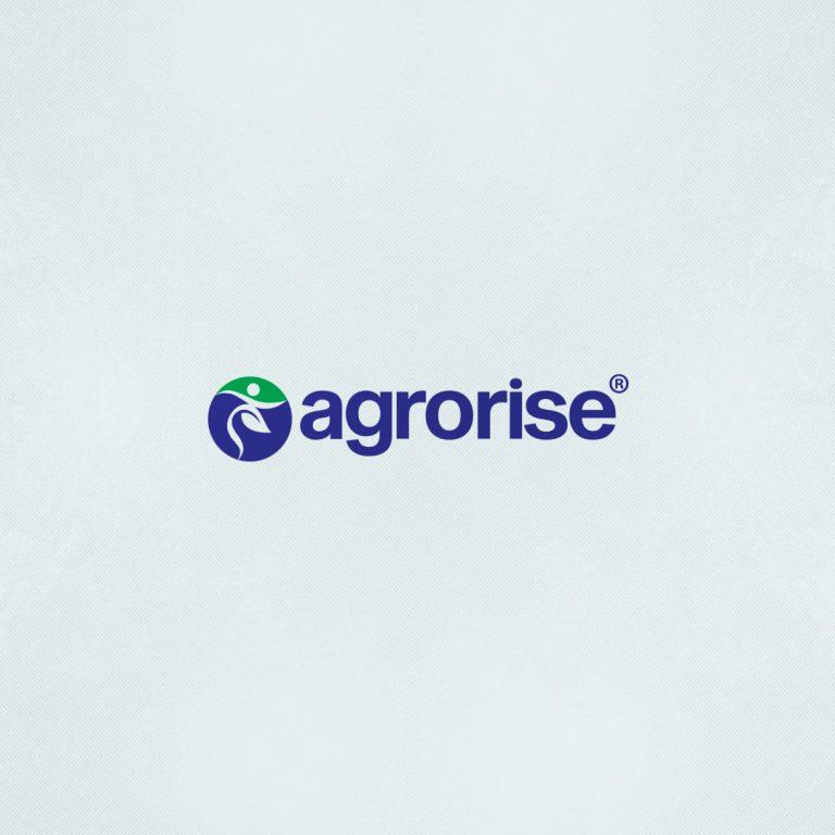 Agrorise Logo Tasarımı